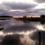 Högvatten i Själsö. Vattnet står 60 cm högre än normalt och Skälsö å har blivit ett sund som på 1700-talet. Foto Martin Ginzel.